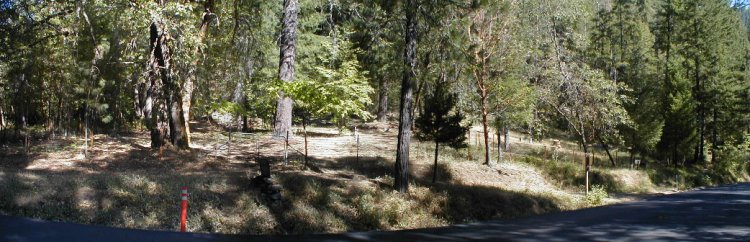 A small area of forest in California's Siskiyou Mountain range near the Oregon border. This being the cemetery where my father was buried according to his wishes -- in just a pine box and shroud with no funeral ceremony.